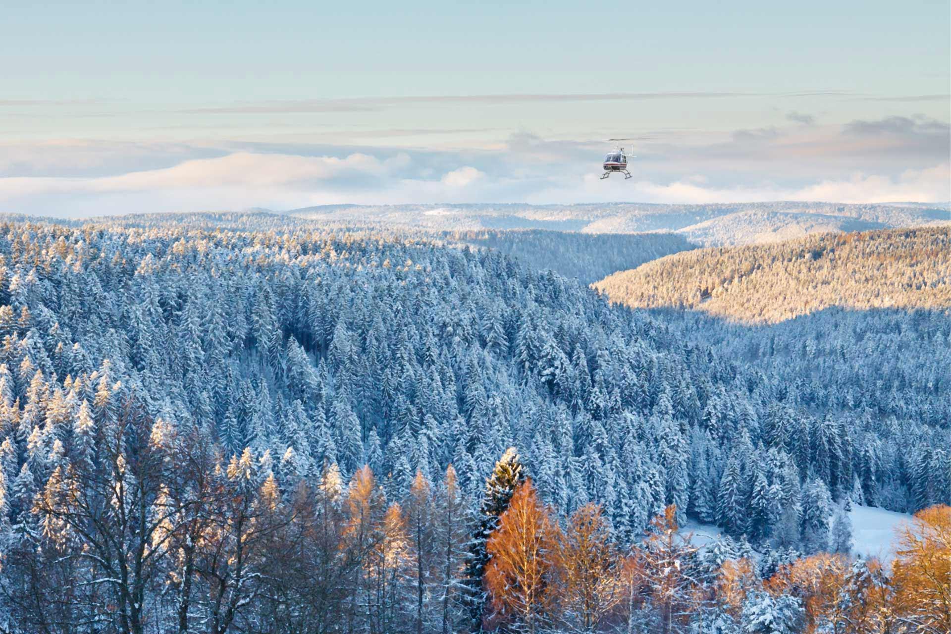 Schwarzwald-Überflug im Winter mit Heli-Breisgau